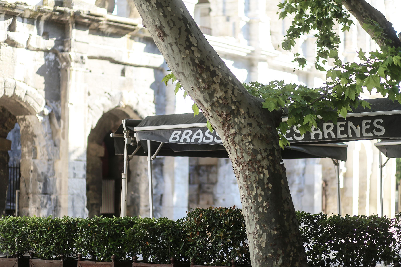 brasserie arene